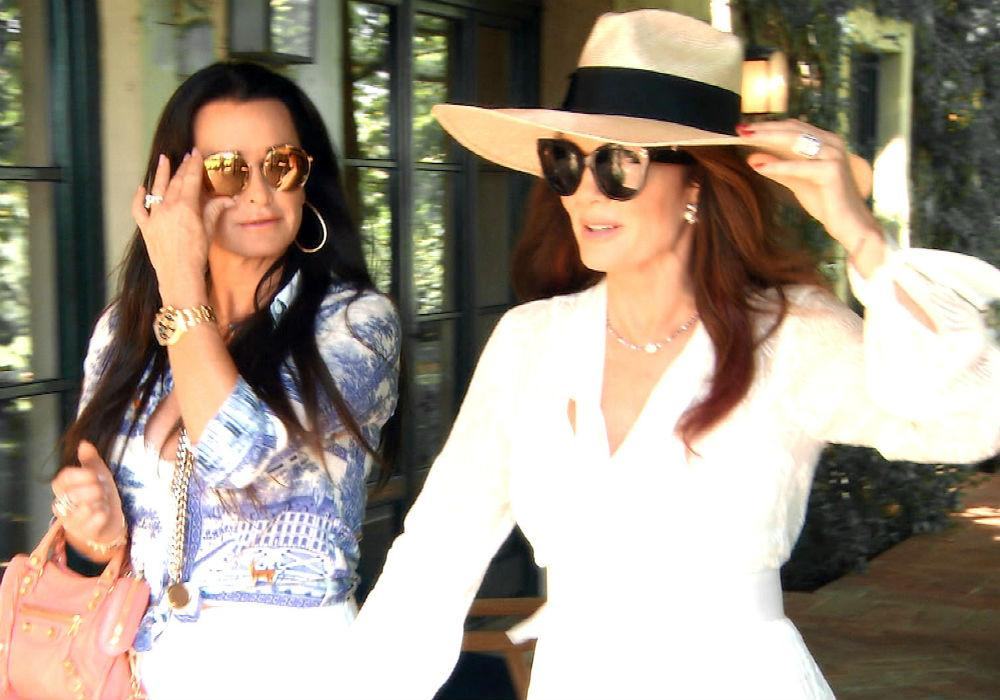 RHOBH Kyle Richards Breaks Down #Puppygate - Whose Side Are You On?