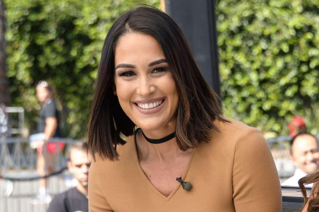 Brie Bella Was Originally Against Nikki Dating Artem Because She Wanted Her Back With John Cena