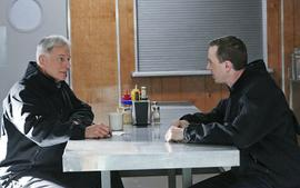 NCIS Star Sean Murray Reveals What It Is Really Like Working With Mark Harmon Everyday