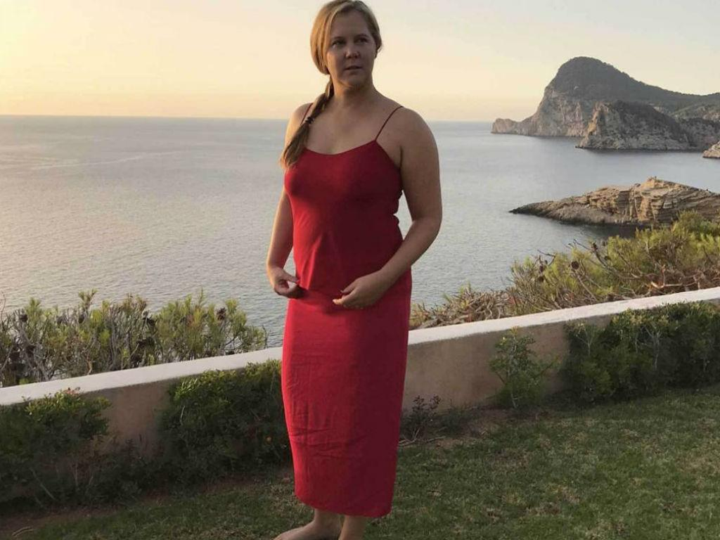 Amy Schumer Reveals Baby's Gender As She Awaits Birth Of Her First Child With Husband Chris Fischer