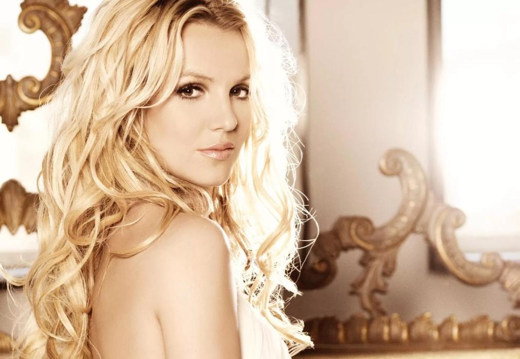 Britney Spears Fans Hold FreeBritney Protest Outside Conservatorship Court Hearing