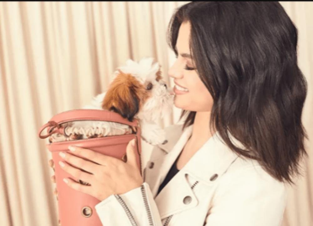 Selena Gomez Shares New Photo For Coach As Fashion Partnership Continues