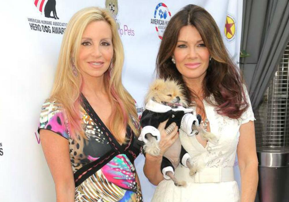 Camille Grammer Should Have Pulled A Lisa Vanderpump And Skipped The RHOBH Season 9 Reunion