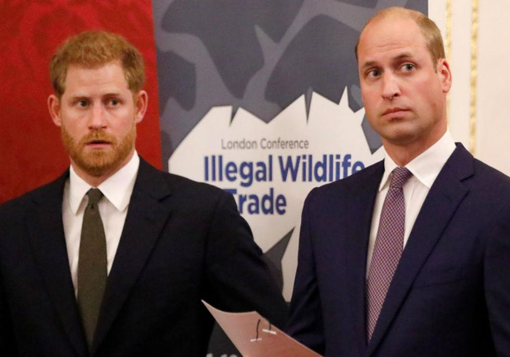 Is Queen Elizabeth The Real Reason For Prince Harry And Prince William's Royal Split?