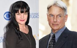 Mark Harmon Had This Reaction After Pauley Perrette Claimed He Assaulted And Intimidated Her -- Which Side Is Winning The PR Fight With 'NCIS' Fans?