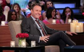 Chris Harrison Teases Bachelor in Paradise First Ever Fist-Fight 'It Is Surprising'