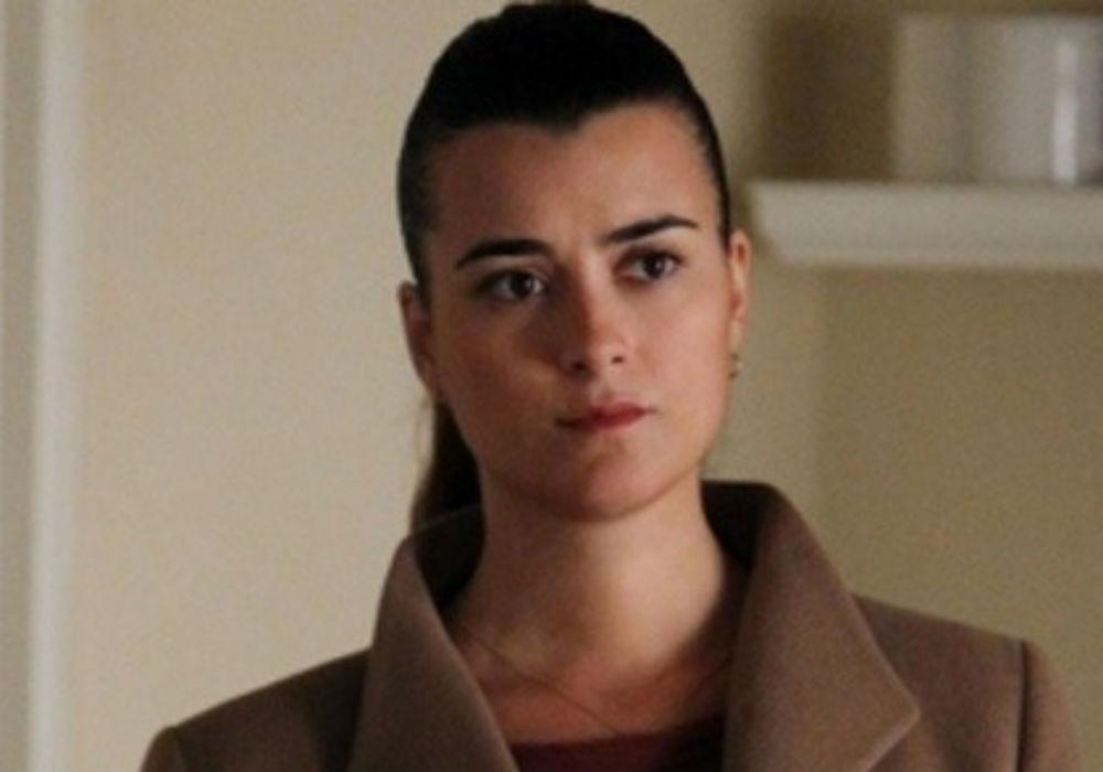 How Did NCIS Producers Convince Cote De Pablo To Return As Ziva For Season 17?