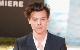 Harry Styles Explains Why He Turned Down The Role Of Prince Eric In The Upcoming Live-Action Remake Of The Little Mermaid