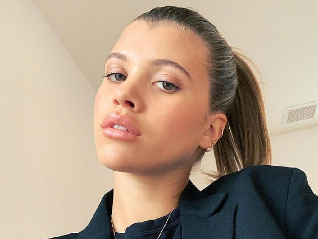 Sofia Richie Dragged For 'Insensitive' Wildfire Remarks