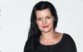 Pauley Perrette, Former 'NCIS' Star Warns Fans About This