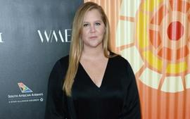 Amy Schumer Updates Fans On Her IVF Journey - 'We Got 1 Normal Embryo'
