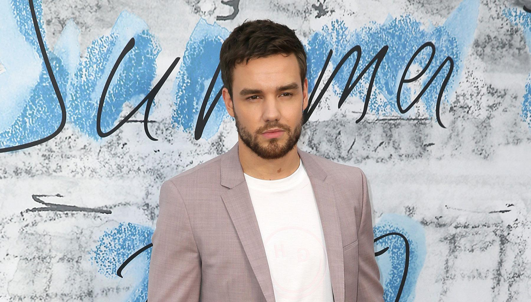 Liam Payne Teases Exciting One Direction Project To Mark The Band's 10th Anniversary And Gushes Over Harry Styles!