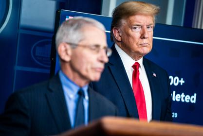 Donald Trump Wonders Why People Like Dr. Fauci While 'Nobody Likes' Him - Check Out His Theory!