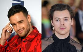 Liam Payne Posts Hilarious TikTok Video With Harry Styles And Fans Are Freaking Out - Did They Just Tease Their Reunion?