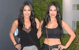 Nikki And Brie Bella Reportedly 'Nervous' About Their Fast-Approaching Due Dates - Here's Why!