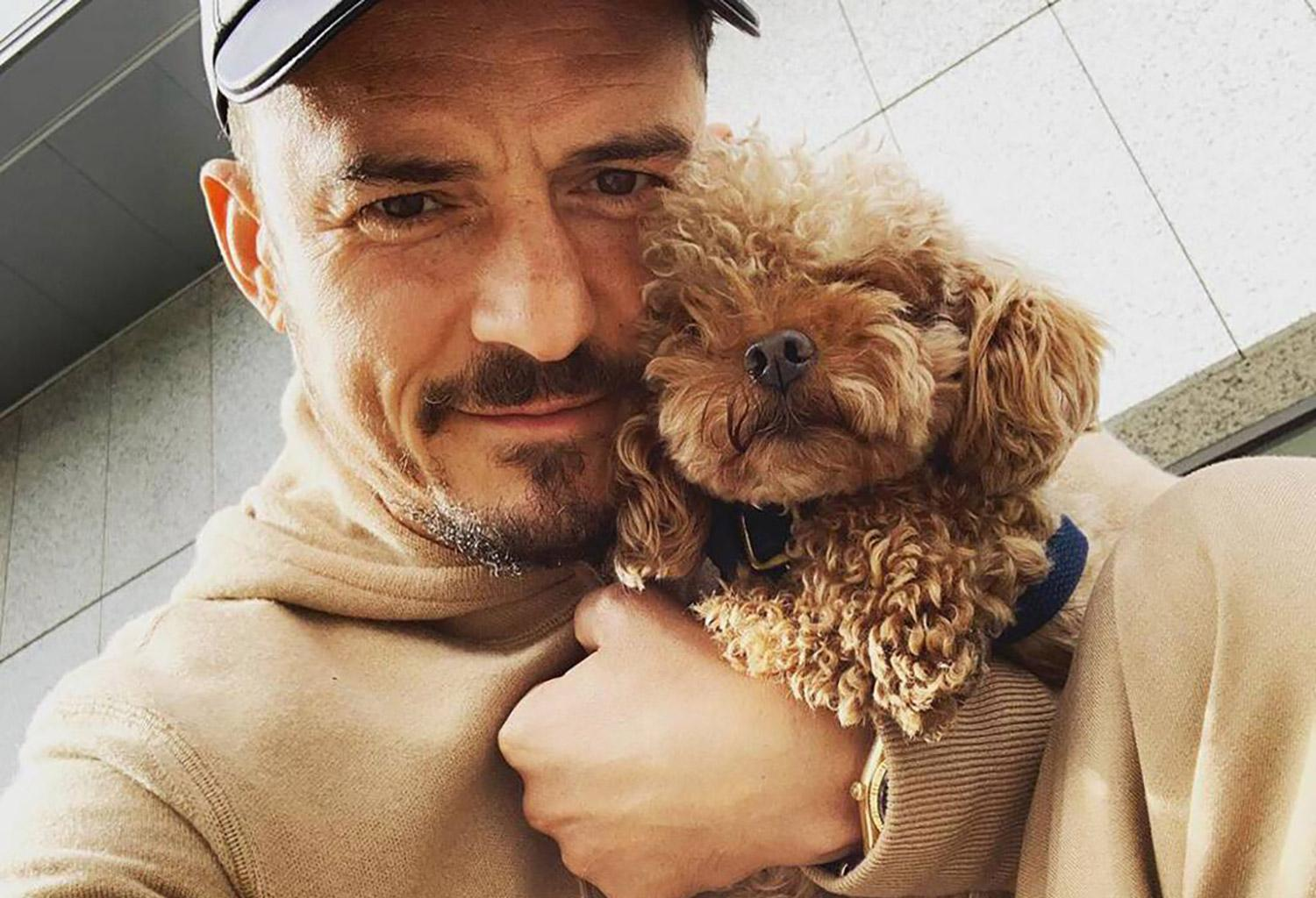 Orlando Bloom Cries As He Reveals His Puppy Might Be Dead And Shows Off New Tattoo In His Honor!