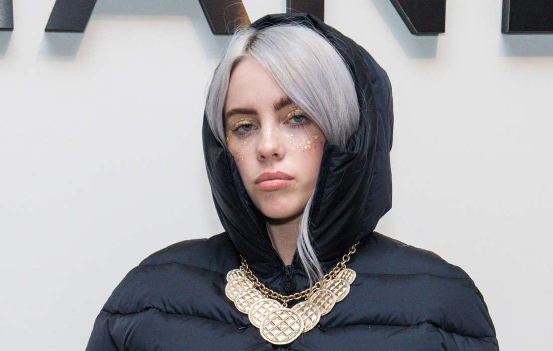 Billie Eilish Says Her Puppy Pooped All Over Her Shoe Collection