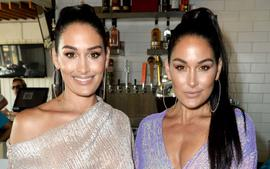 Nikki Bella Reportedly 'Leaning On' Twin Brie While Fiance Artem Chigvintsev Is Busy With DWTS
