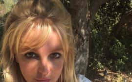 Britney Spears's Fans Think Her Latest Video Was Scripted Amid Concerns For Her Mental Health