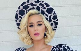 Katy Perry Has No Sign Of A Baby Bump In Christian Siriano Dress