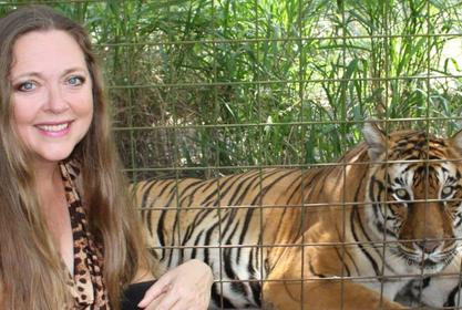 Carole Baskin's Big Cat Rescue Sanctuary Site Of Vicious Tiger Attack On Volunteer Worker