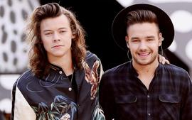 Liam Payne Shares His Opinion On Former One Direction Bandmate Harry Styles Rocking A Dress On The Cover Of Vogue