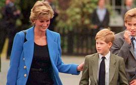 Princes Harry And William's Rift - Royal Expert Says Princess Diana Would Be 'Extremely Disappointed!'