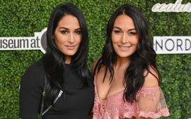 Nikki And Brie Bella Open Up About Their Fitness Almost A Year After Giving Birth!