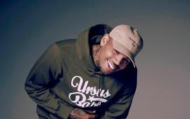 Chris Brown Is Sued By Housekeeper After She Was Allegedly Mauled By Her Dog