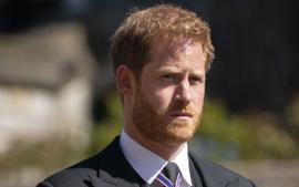 Prince Harry To Release Tell All Book About His Life As A Royal 30 Years After Princess Diana's Memoir Was Published!